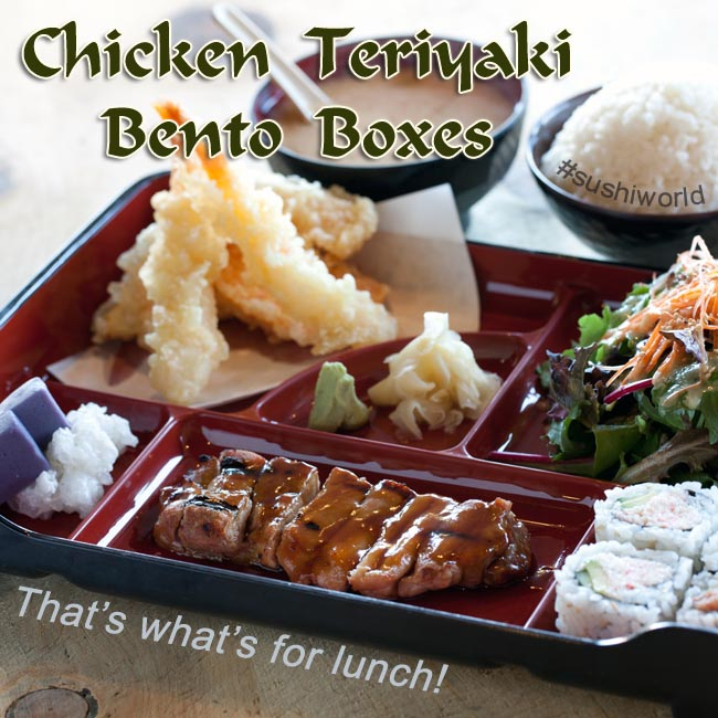 Orange County Sushi OC Chicken Teriyaki Bento Boxes Lunch time Special
