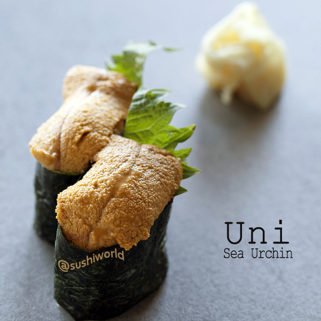 Uni Sea Urchin Decadent Rich Buttery Delicious Orange County Best OC Sushi World