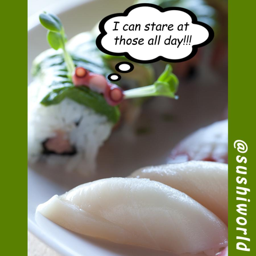 Stare at Our Sushi Humps All Day Perverts Delicious Sushi World Orange County OC