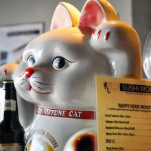 OC Happy Hour All Day Mondays and Tuesdays Sushi World Appetizers Sake Sashimi Orange County Sushi World